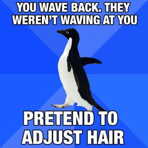 socially awkward penguine